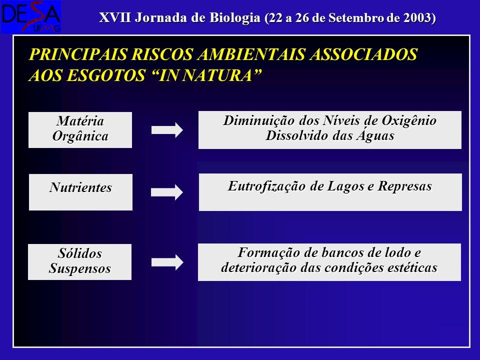 Diminuição dos Níveis de Oxigênio Dissolvido das Águas Matéria Orgânica XVII Jornada de Biologia (22 a 26 de Setembro de 2003) PRINCIPAIS RISCOS AMBIE