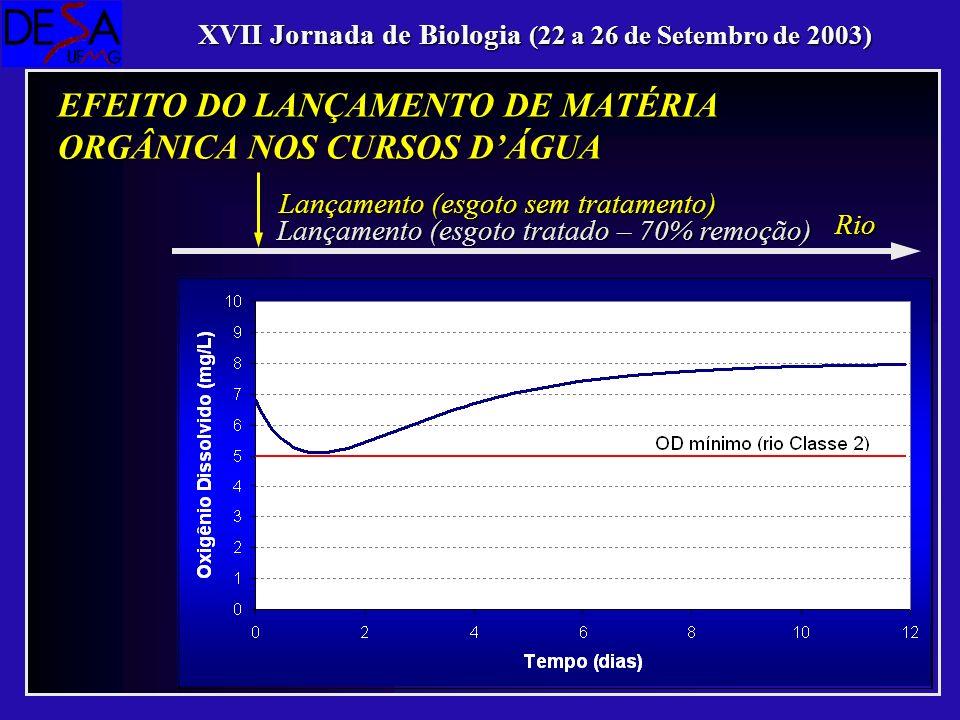 Lançamento (esgoto sem tratamento) Rio XVII Jornada de Biologia (22 a 26 de Setembro de 2003) EFEITO DO LANÇAMENTO DE MATÉRIA ORGÂNICA NOS CURSOS DÁGU