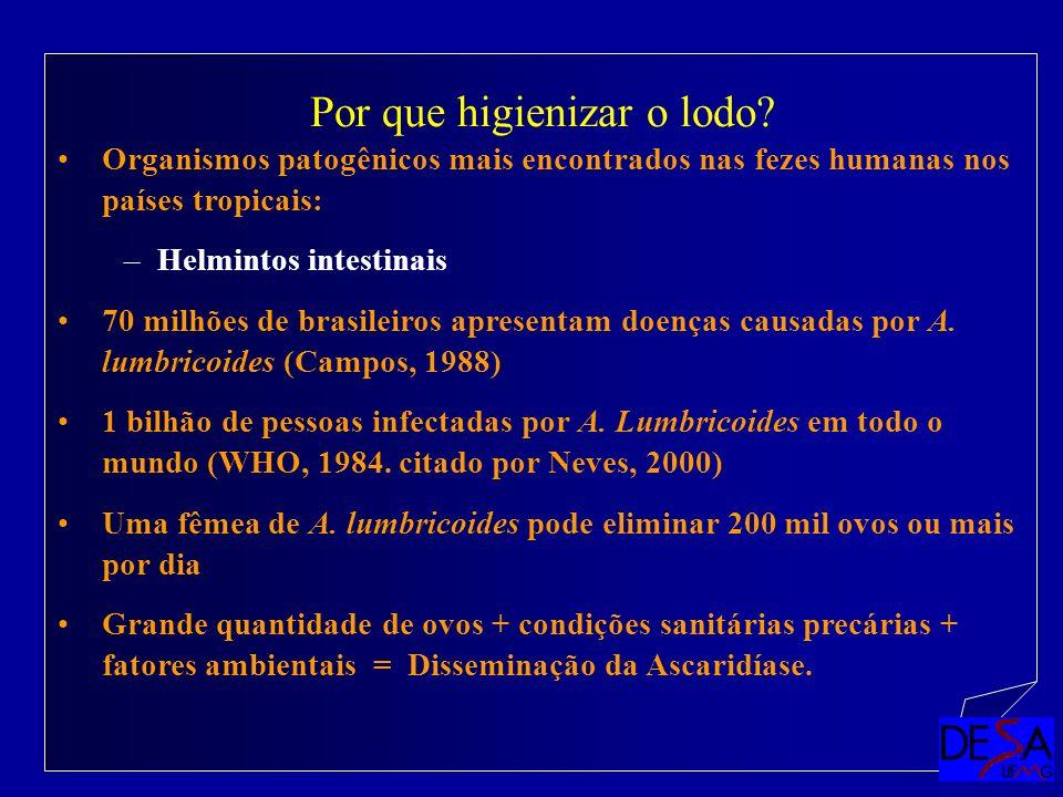 Organismos patogênicos mais encontrados nas fezes humanas nos países tropicais: –Helmintos intestinais 70 milhões de brasileiros apresentam doenças ca