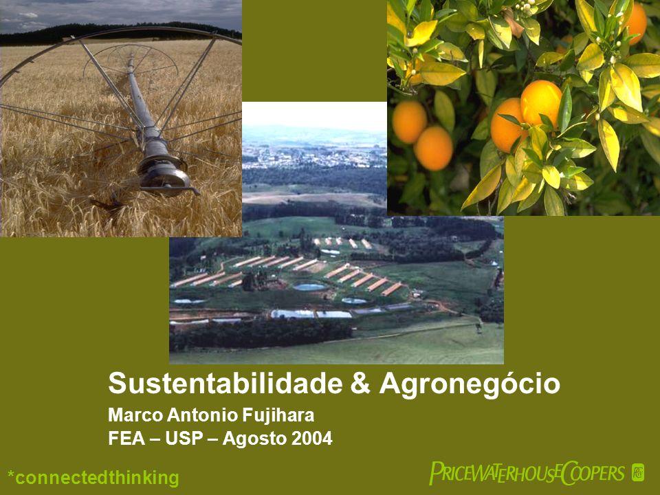 Sustentabilidade & Agronegócio Marco Antonio Fujihara FEA – USP – Agosto 2004 *connectedthinking