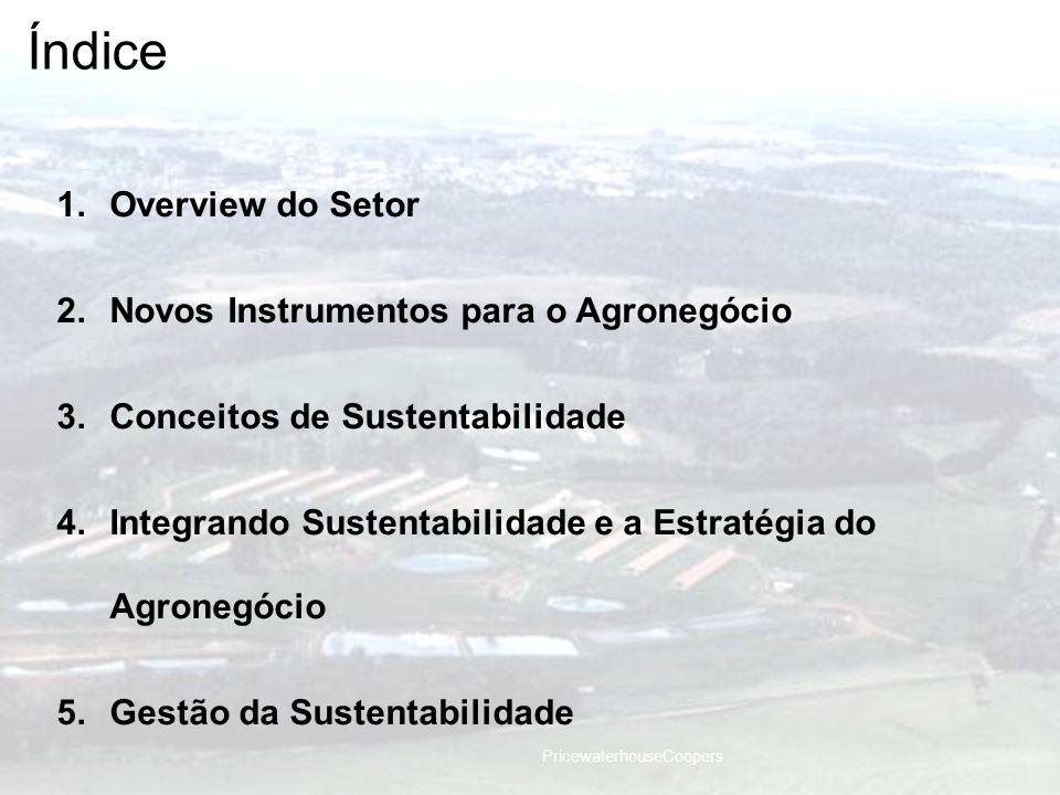 PricewaterhouseCoopers Índice 1.Overview do Setor 2.Novos Instrumentos para o Agronegócio 3.Conceitos de Sustentabilidade 4.Integrando Sustentabilidad