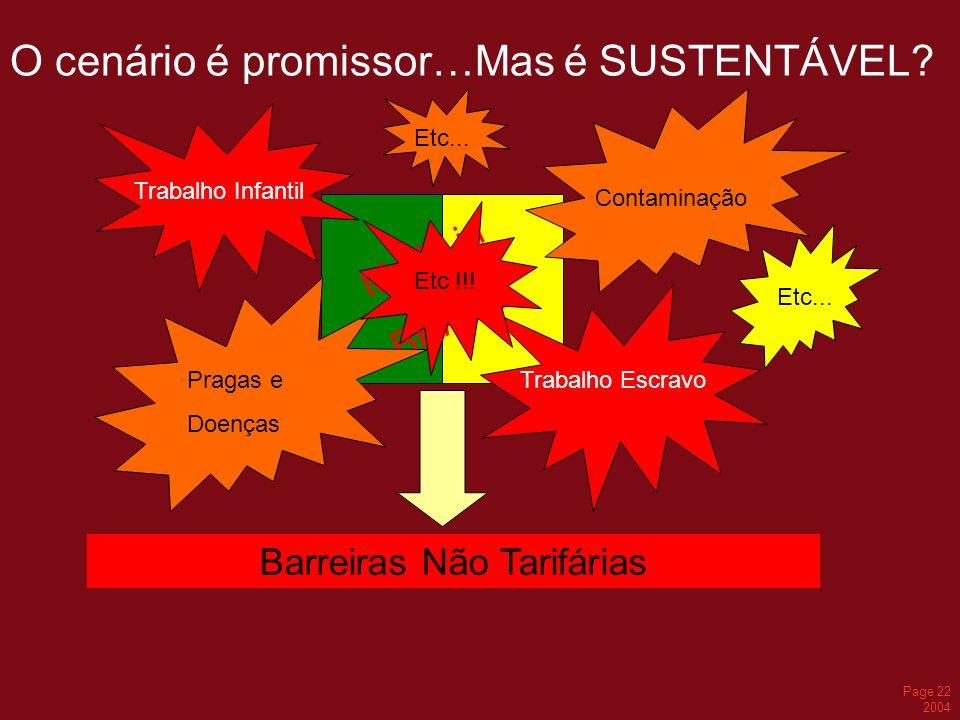 Page 22 2004 O cenário é promissor…Mas é SUSTENTÁVEL? Made in BRAZIL Trabalho Infantil Contaminação Trabalho EscravoPragas e Doenças Barreiras Não Tar