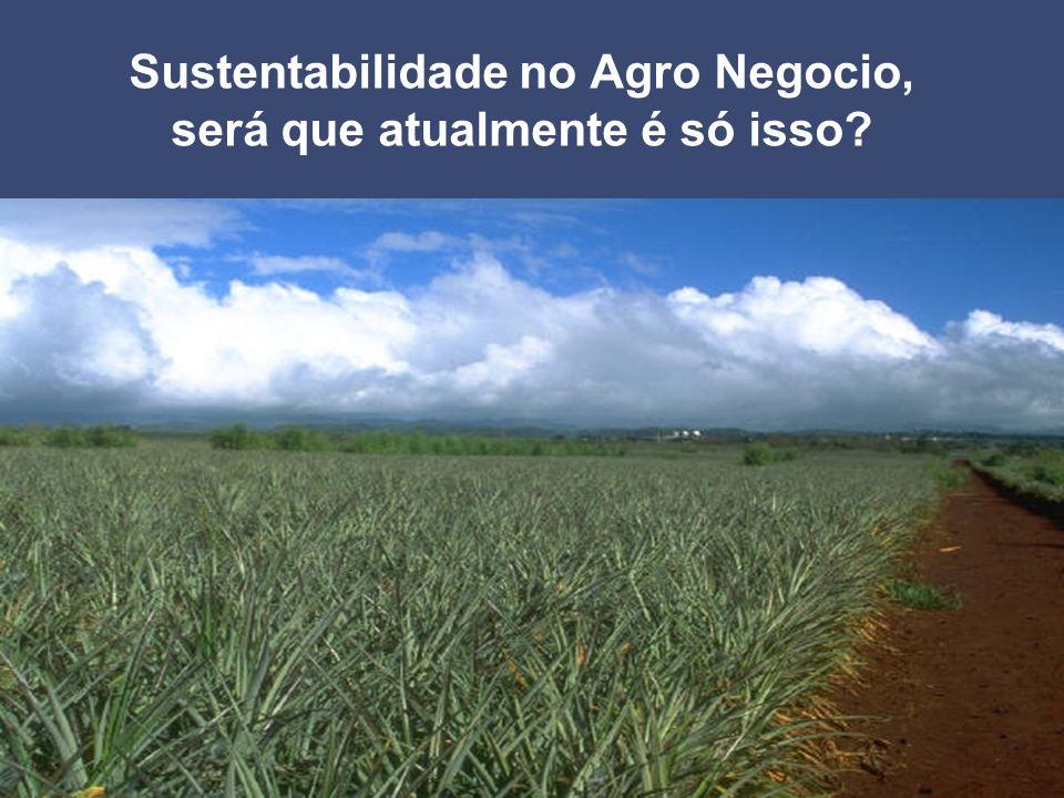 Page 28 2004 Sustentabilidade no Agro Negocio, será que atualmente é só isso?