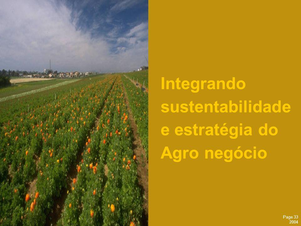 Page 33 2004 Integrando sustentabilidade e estratégia do Agro negócio
