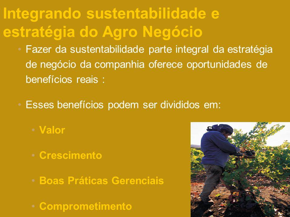 Page 34 2004 Integrando sustentabilidade e estratégia do Agro Negócio Fazer da sustentabilidade parte integral da estratégia de negócio da companhia o