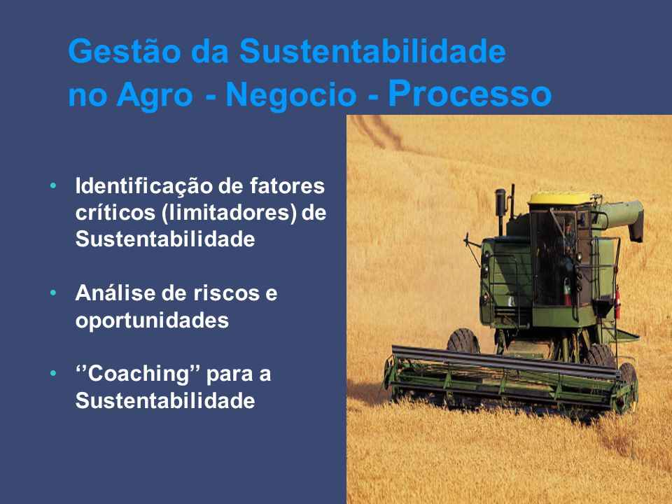 Identificação de fatores críticos (limitadores) de Sustentabilidade Análise de riscos e oportunidades Coaching para a Sustentabilidade Gestão da Suste