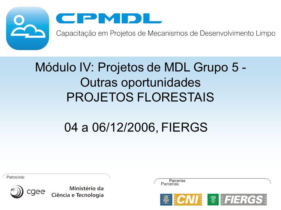 Módulo IV: Projetos de MDL Grupo 5 - Outras oportunidades PROJETOS FLORESTAIS 04 a 06/12/2006, FIERGS