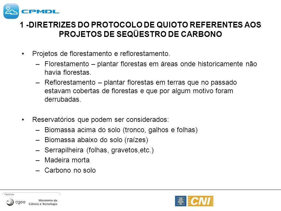 1 -DIRETRIZES DO PROTOCOLO DE QUIOTO REFERENTES AOS PROJETOS DE SEQÜESTRO DE CARBONO Projetos de florestamento e reflorestamento. –Florestamento – pla