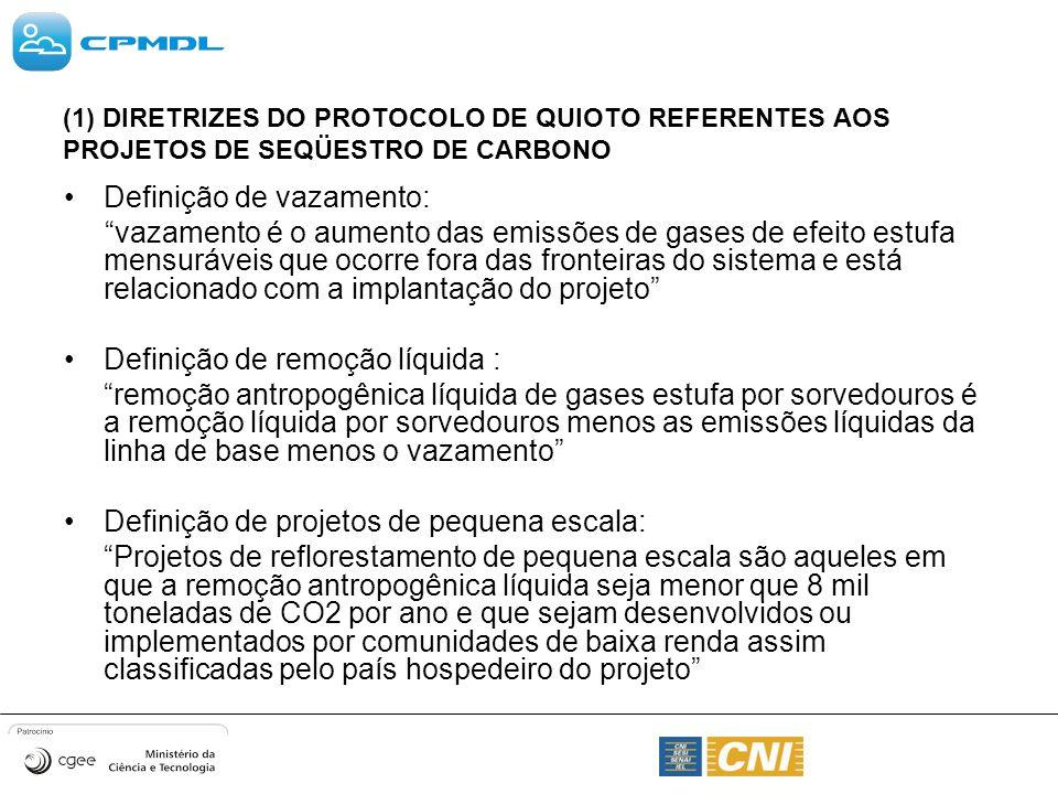 (1) DIRETRIZES DO PROTOCOLO DE QUIOTO REFERENTES AOS PROJETOS DE SEQÜESTRO DE CARBONO Definição de vazamento: vazamento é o aumento das emissões de ga
