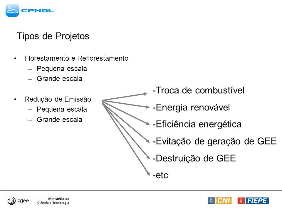 Tipos de Projetos Florestamento e Reflorestamento –Pequena escala –Grande escala Redução de Emissão –Pequena escala –Grande escala -Troca de combustível -Energia renovável -Eficiência energética -Evitação de geração de GEE -Destruição de GEE -etc
