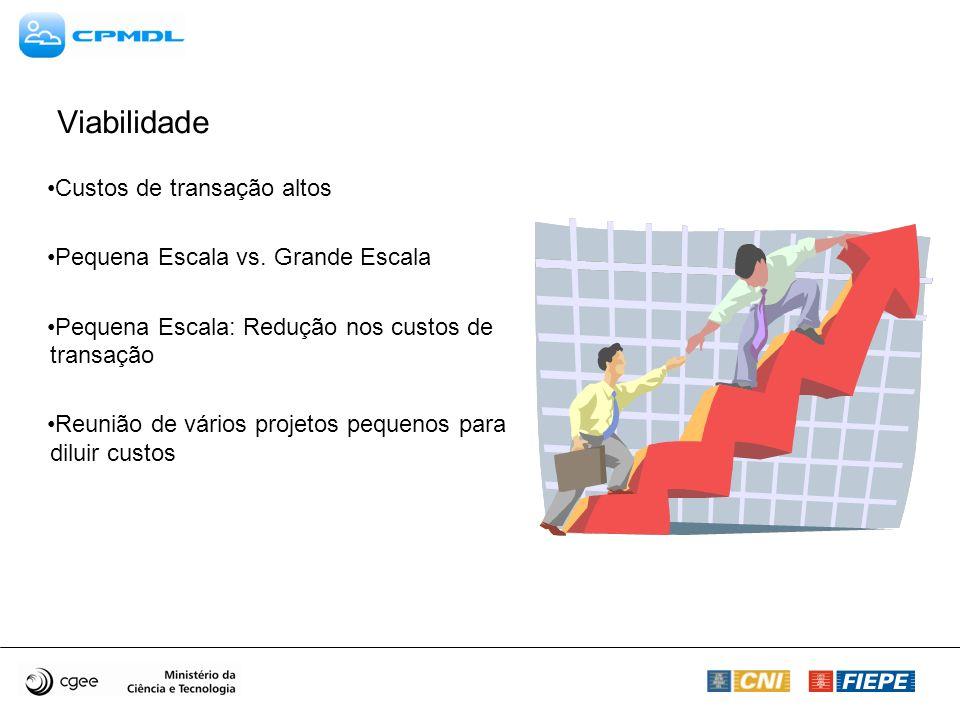 Viabilidade Custos de transação altos Pequena Escala vs. Grande Escala Pequena Escala: Redução nos custos de transação Reunião de vários projetos pequ