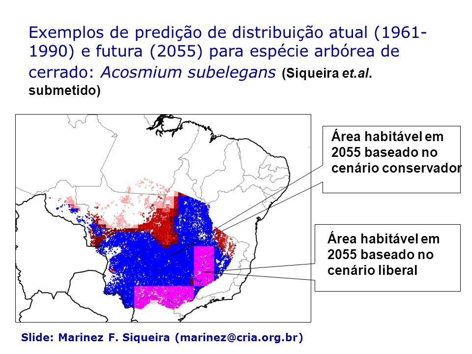 Exemplos de predição de distribuição atual (1961- 1990) e futura (2055) para espécie arbórea de cerrado: Acosmium subelegans (Siqueira et.al. submetid