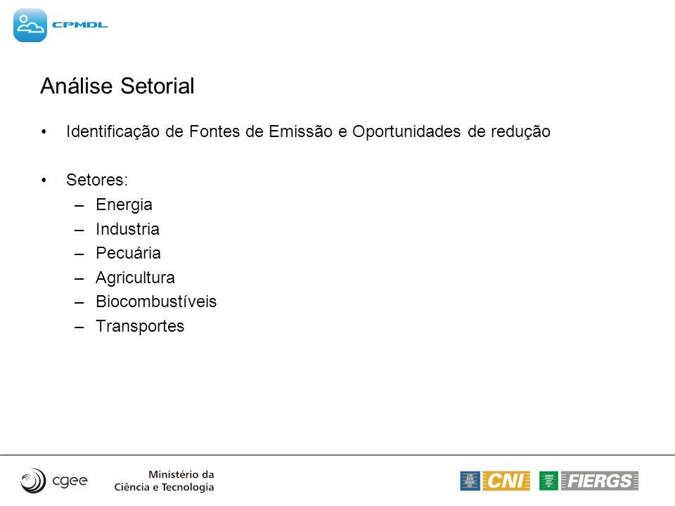 Análise Setorial Identificação de Fontes de Emissão e Oportunidades de redução Setores: –Energia –Industria –Pecuária –Agricultura –Biocombustíveis –T