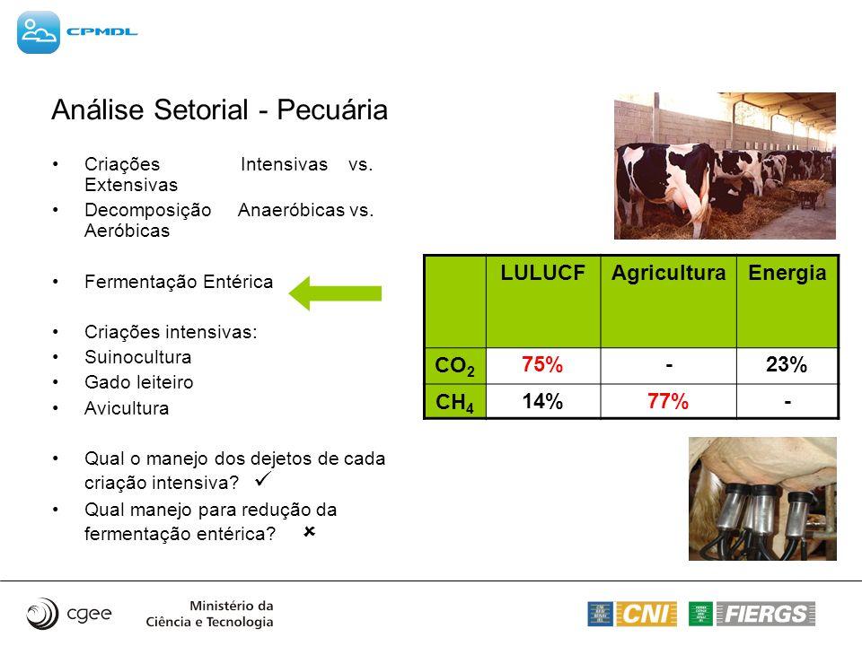Análise Setorial - Pecuária Criações Intensivas vs. Extensivas Decomposição Anaeróbicas vs. Aeróbicas Fermentação Entérica Criações intensivas: Suinoc