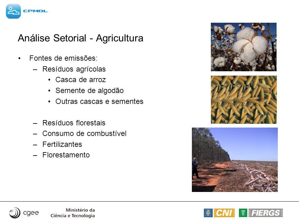 Análise Setorial - Agricultura Fontes de emissões: –Resíduos agrícolas Casca de arroz Semente de algodão Outras cascas e sementes –Resíduos florestais