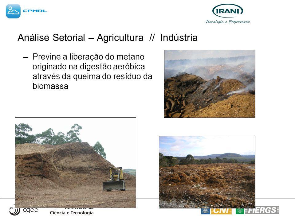 –Previne a liberação do metano originado na digestão aeróbica através da queima do resíduo da biomassa Análise Setorial – Agricultura // Indústria