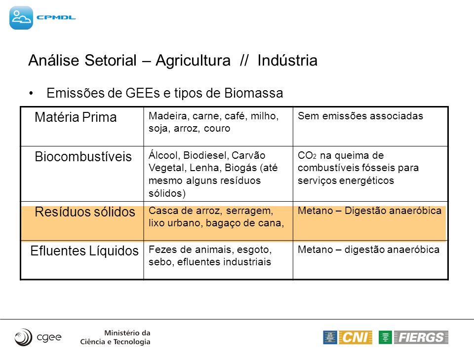 Emissões de GEEs e tipos de Biomassa Matéria Prima Madeira, carne, café, milho, soja, arroz, couro Sem emissões associadas Biocombustíveis Álcool, Bio