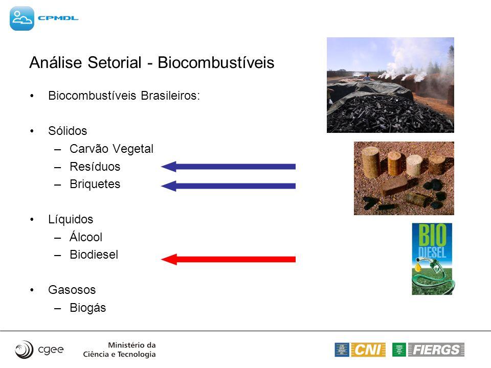 Análise Setorial - Biocombustíveis Biocombustíveis Brasileiros: Sólidos –Carvão Vegetal –Resíduos –Briquetes Líquidos –Álcool –Biodiesel Gasosos –Biog