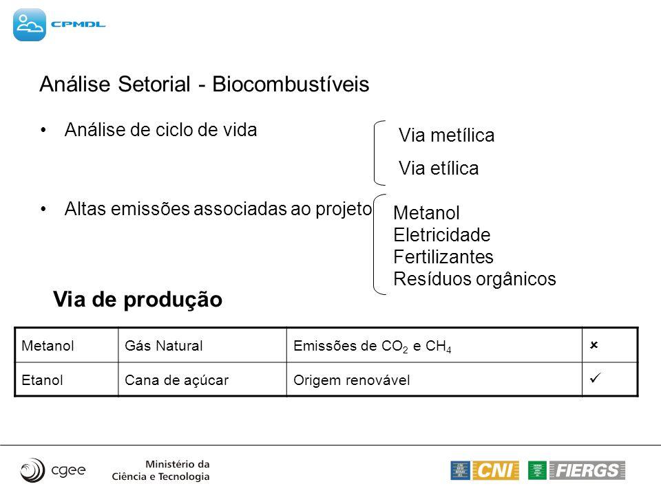 Análise de ciclo de vida Altas emissões associadas ao projeto Via metílica Via etílica MetanolGás NaturalEmissões de CO 2 e CH 4 EtanolCana de açúcarO