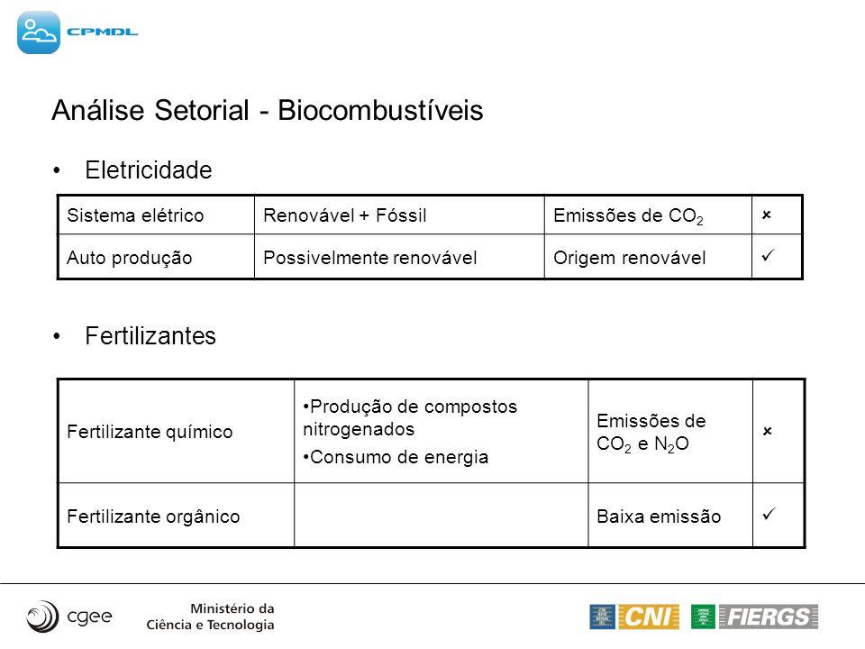 Análise Setorial - Biocombustíveis Eletricidade Fertilizantes Sistema elétricoRenovável + FóssilEmissões de CO 2 Auto produçãoPossivelmente renovávelO