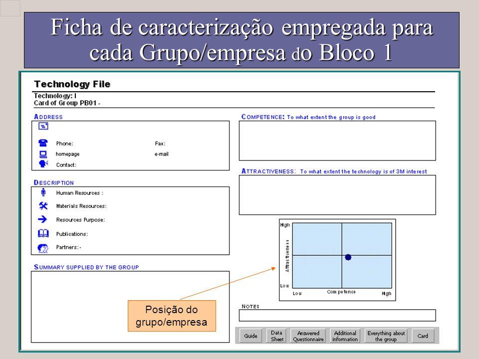Ficha de caracterização empregada para cada Grupo/empresa d o Bloco 1 Posição do grupo/empresa