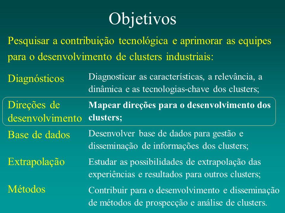 Objetivos Diagnosticar as características, a relevância, a dinâmica e as tecnologias-chave dos clusters; Mapear direções para o desenvolvimento dos cl