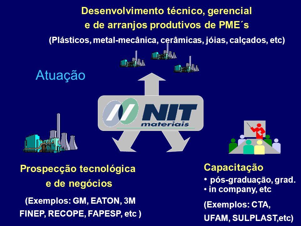 Capacitação pós-graduação, grad. in company, etc (Exemplos: CTA, UFAM, SULPLAST,etc) Desenvolvimento técnico, gerencial e de arranjos produtivos de PM