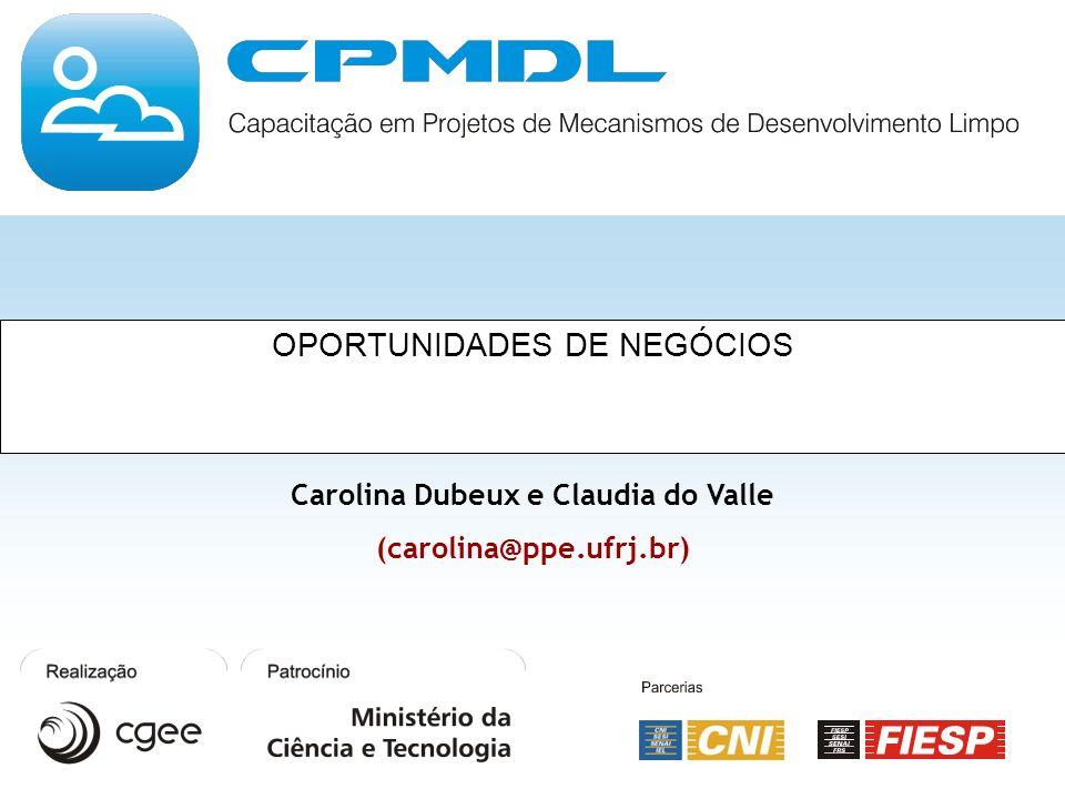 OPORTUNIDADES DE NEGÓCIOS Carolina Dubeux e Claudia do Valle (carolina@ppe.ufrj.br)
