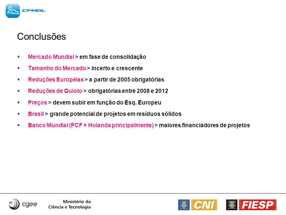 Conclusões Mercado Mundial > em fase de consolidação Tamanho do Mercado > incerto e crescente Reduções Européias > a partir de 2005 obrigatórias Reduç