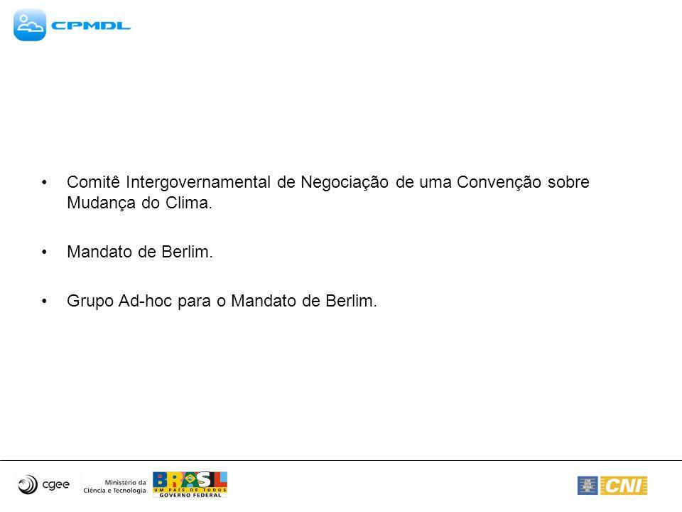 Comitê Intergovernamental de Negociação de uma Convenção sobre Mudança do Clima.