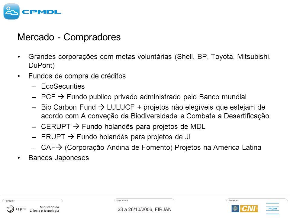 Grandes corporações com metas voluntárias (Shell, BP, Toyota, Mitsubishi, DuPont) Fundos de compra de créditos –EcoSecurities –PCF Fundo publico privado administrado pelo Banco mundial –Bio Carbon Fund LULUCF + projetos não elegíveis que estejam de acordo com A conveção da Biodiversidade e Combate a Desertificação –CERUPT Fundo holandês para projetos de MDL –ERUPT Fundo holandês para projetos de JI –CAF (Corporação Andina de Fomento) Projetos na América Latina Bancos Japoneses