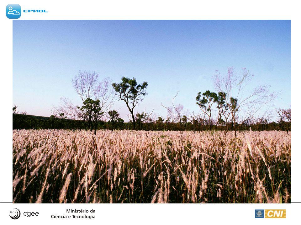 (1) DIRETRIZES DO PROTOCOLO DE QUIOTO REFERENTES AOS PROJETOS DE SEQÜESTRO DE CARBONO Definição de vazamento: vazamento é o aumento das emissões de gases de efeito estufa mensuráveis que ocorre fora das fronteiras do sistema e está relacionado com a implantação do projeto Definição de remoção líquida : remoção antropogênica líquida de gases estufa por sorvedouros é a remoção líquida por sorvedouros menos as emissões líquidas da linha de base menos o vazamento Definição de projetos de pequena escala: Projetos de reflorestamento de pequena escala são aqueles em que a remoção antropogênica líquida seja menor que 8 mil toneladas de CO2 por ano e que sejam desenvolvidos ou implementados por comunidades de baixa renda assim classificadas pelo país hospedeiro do projeto