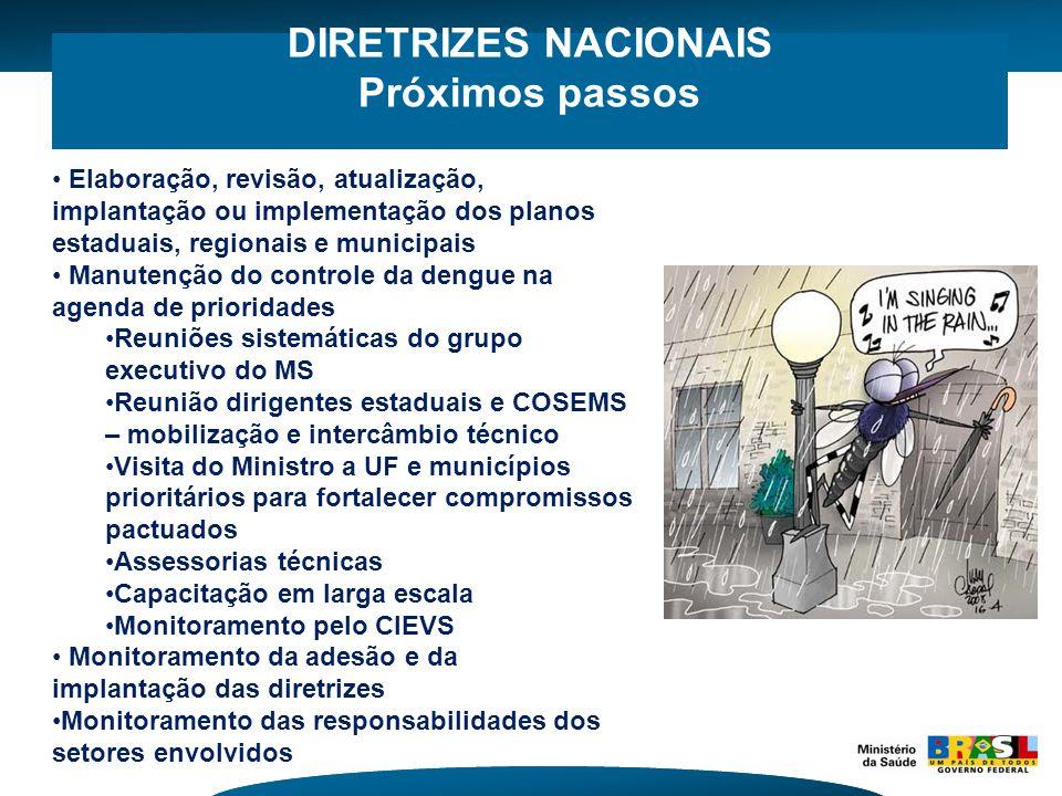 DIRETRIZES NACIONAIS Próximos passos Elaboração, revisão, atualização, implantação ou implementação dos planos estaduais, regionais e municipais Manut