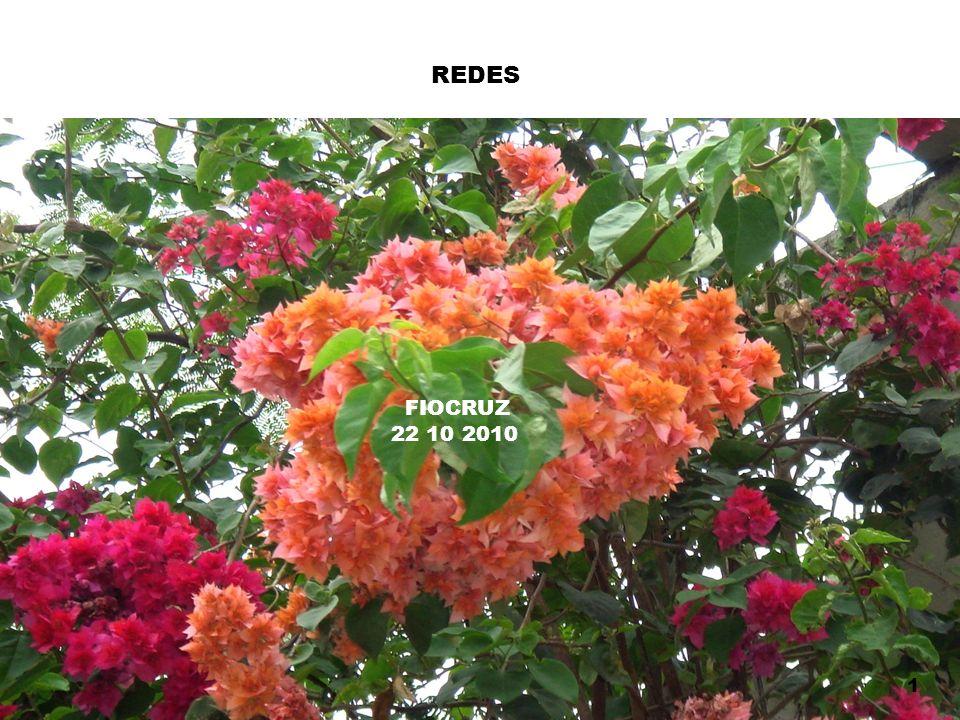 REDES 1 FIOCRUZ 22 10 2010