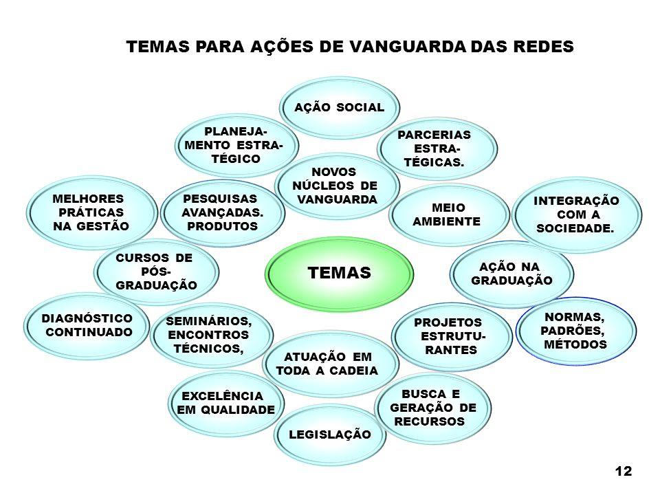 TEMAS PARA AÇÕES DE VANGUARDA DAS REDES TEMAS PLANEJA- MENTO ESTRA- TÉGICO MEIO AMBIENTE PARCERIAS ESTRA- TÉGICAS.