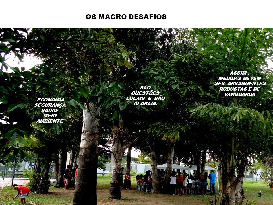 OS MACRO DESAFIOS ECONOMIA SEGURANÇA SAÚDE MEIO AMBIENTE SÀO QUESTÕES LOCAIS E SÃO GLOBAIS.