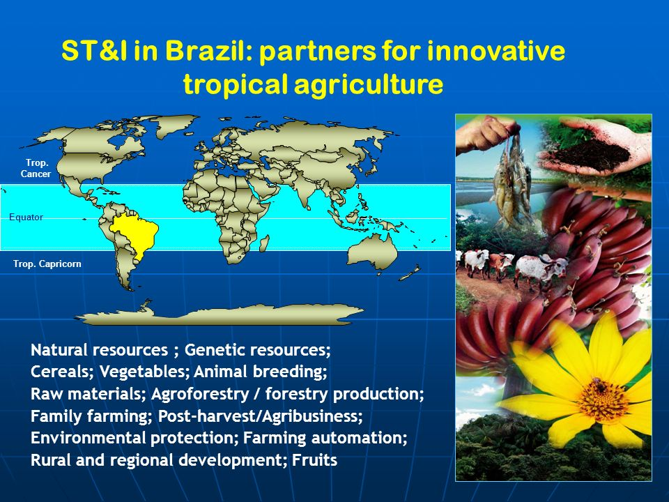 ST&I in Brazil: partners for innovative tropical agriculture Natural resources ; Genetic resources; Cereals; Vegetables; Animal breeding; Raw materials; Agroforestry / forestry production; Family farming; Post-harvest/Agribusiness; Environmental protection; Farming automation; Rural and regional development; Fruits Equator Trop.