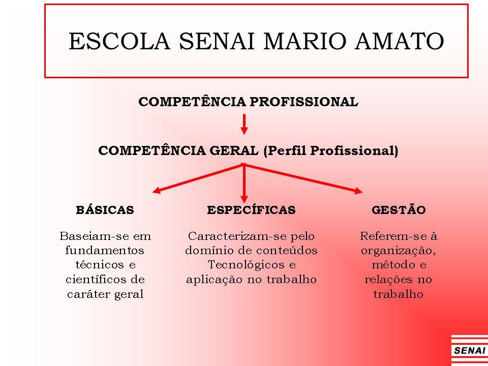 ESCOLA SENAI MARIO AMATO COMPETÊNCIA PROFISSIONAL COMPETÊNCIA GERAL (Perfil Profissional)