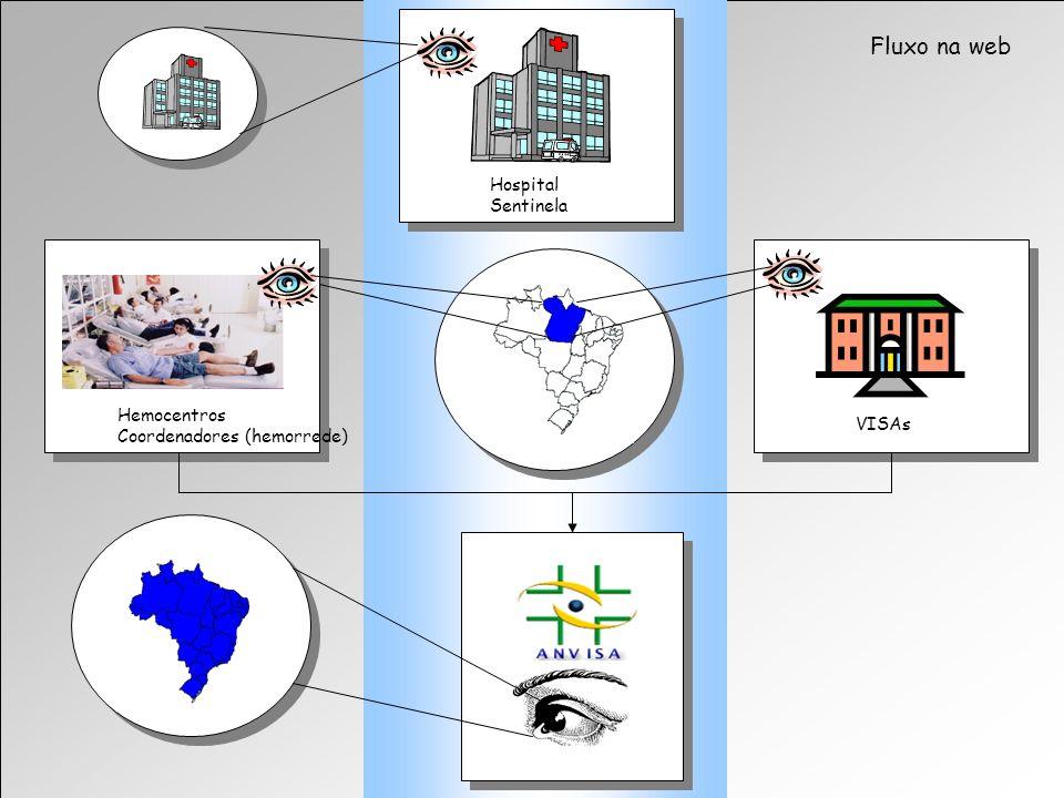 Agência Nacional de Vigilância Sanitária www.anvisa.gov.br Fluxo na web Hospital Sentinela VISAs Hemocentros Coordenadores (hemorrede)