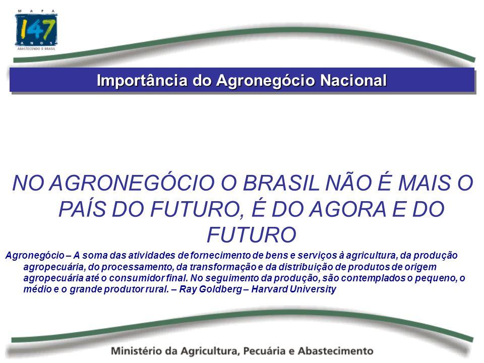 Importância do Agronegócio Nacional NO AGRONEGÓCIO O BRASIL NÃO É MAIS O PAÍS DO FUTURO, É DO AGORA E DO FUTURO Agronegócio – A soma das atividades de