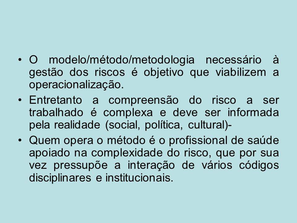 O modelo/método/metodologia necessário à gestão dos riscos é objetivo que viabilizem a operacionalização. Entretanto a compreensão do risco a ser trab