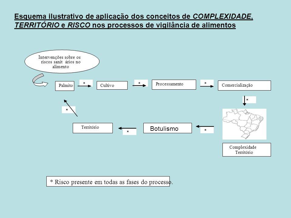 Esquema ilustrativo de aplicação dos conceitos de COMPLEXIDADE, TERRITÓRIO e RISCO nos processos de vigilância de alimentos * * * * * * * Processament