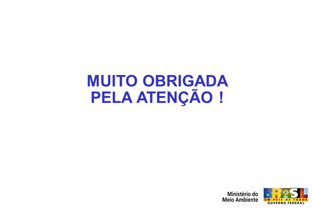 Secretaria de Mudanças Climáticas e Qualidade Ambiental SMCQ MUITO OBRIGADA PELA ATENÇÃO !