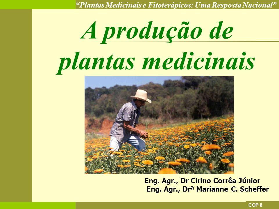 Plantas Medicinais e Fitoterápicos: Uma Resposta Nacional COP 8 A produção de plantas medicinais Eng. Agr., Dr Cirino Corrêa Júnior Eng. Agr., Drª Mar