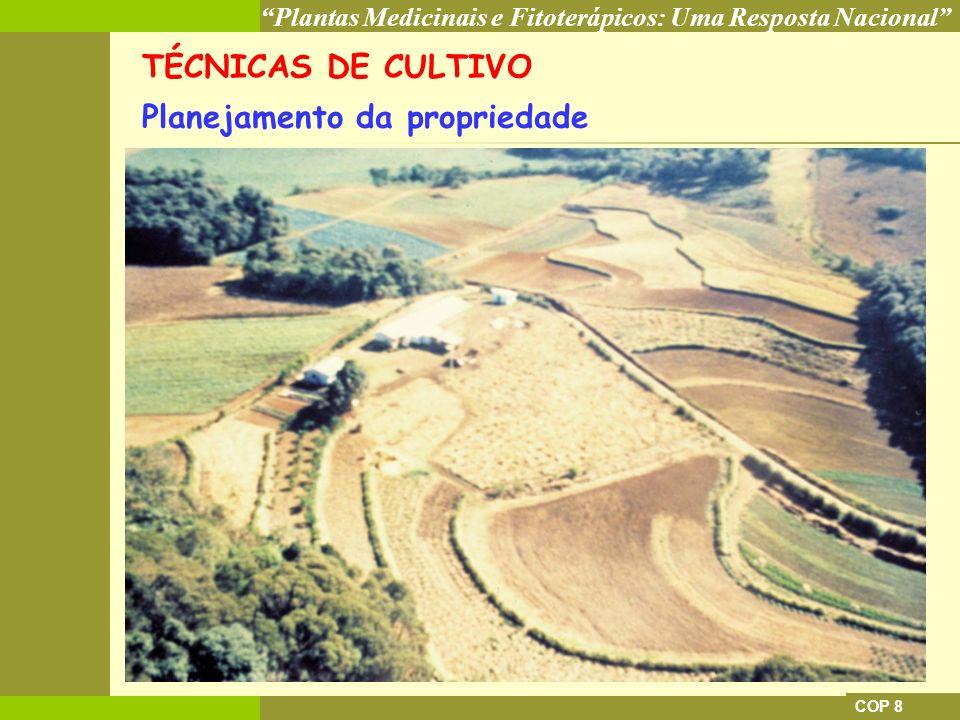Plantas Medicinais e Fitoterápicos: Uma Resposta Nacional COP 8 TÉCNICAS DE CULTIVO Planejamento da propriedade