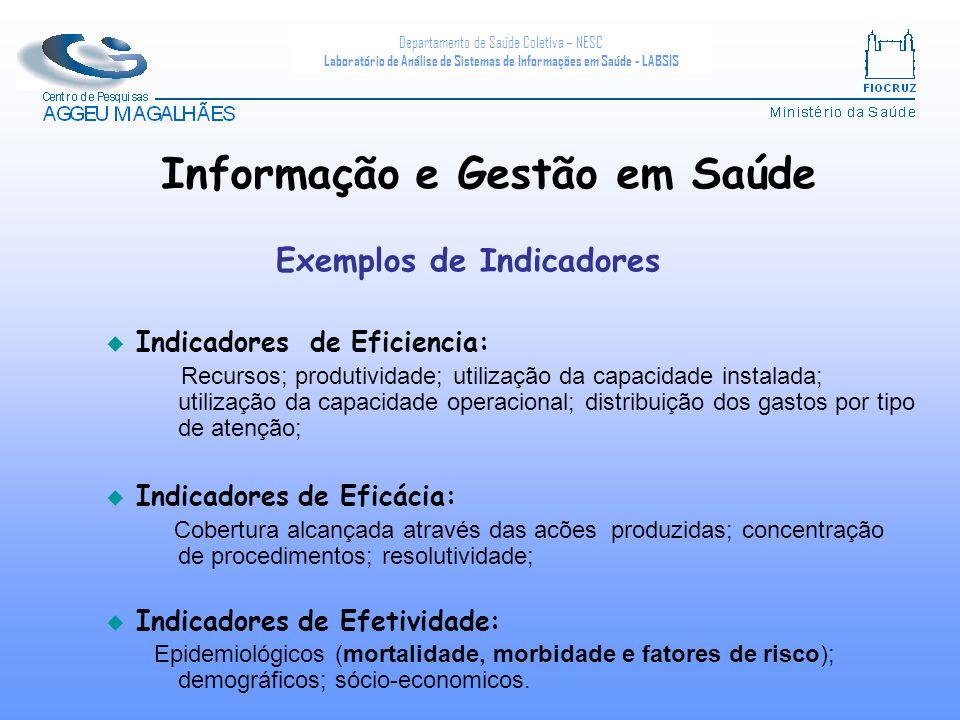 Departamento de Saúde Coletiva – NESC Laboratório de Análise de Sistemas de Informações em Saúde - LABSIS u Indicadores de Eficiencia: Recursos; produ