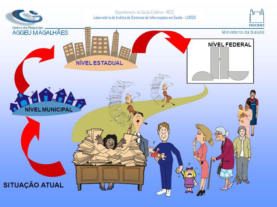 Departamento de Saúde Coletiva – NESC Laboratório de Análise de Sistemas de Informações em Saúde - LABSIS NÍVEL FEDERAL NÍVEL ESTADUAL NÍVEL MUNICIPAL SITUAÇÃO ATUAL