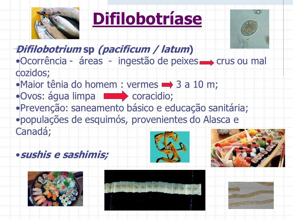 Difilobotríase Difilobotrium sp (pacificum / latum) Ocorrência - áreas - ingestão de peixes crus ou mal cozidos; Maior tênia do homem : vermes 3 a 10