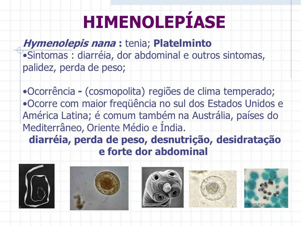 HIMENOLEPÍASE Hymenolepis nana : tenia; Platelminto Sintomas : diarréia, dor abdominal e outros sintomas, palidez, perda de peso; Ocorrência - (cosmop