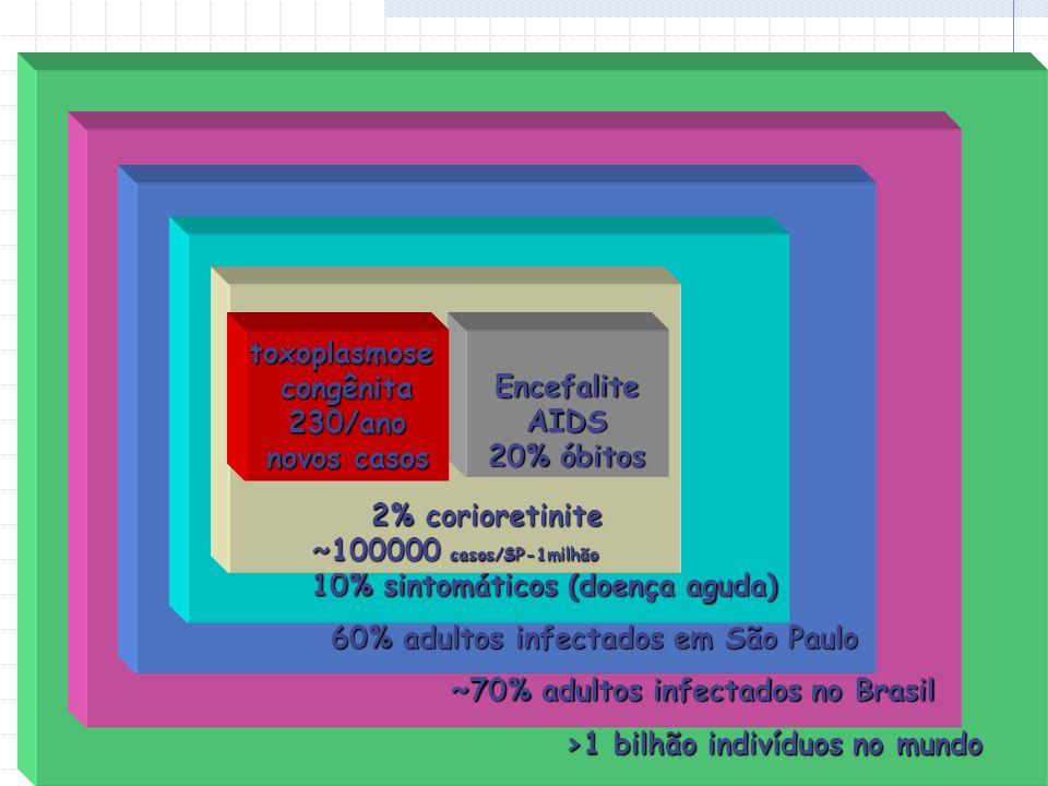 >1 bilhão indivíduos no mundo >1 bilhão indivíduos no mundo ~70% adultos infectados no Brasil ~70% adultos infectados no Brasil 60% adultos infectados